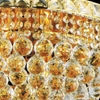 "Picture of 22"" Primo Transitional Crystal Round Chandelier Chrome / Gold 14 Lights"
